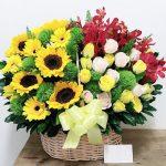 hoa ngay 20 thang 11 51