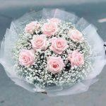 hoa ngay 20 thang 11 54